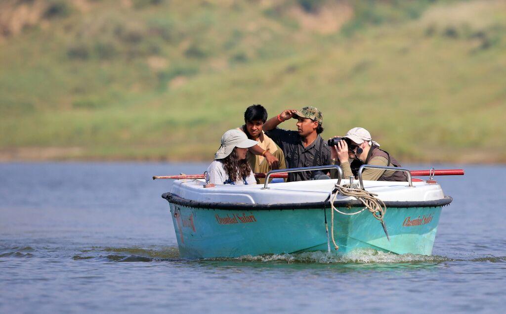 Boat safari chambal